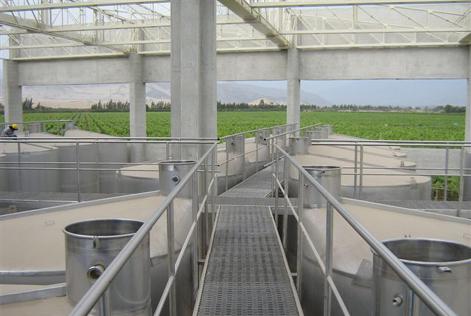 Implementación completa de bodega para destilería de pisco – Perú – 1.500.000